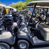 A gathering of.....golf buggies